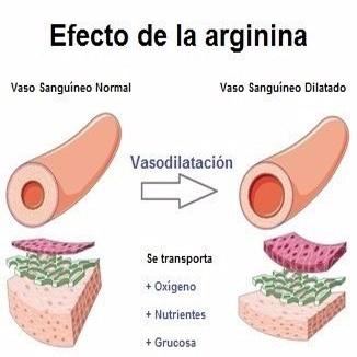 Eficaz Homem - estimulante 60 Cápsulas Nutrivale